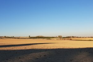 30.000 sqm fertile land with water rights for sale in San Miguel de Salinas